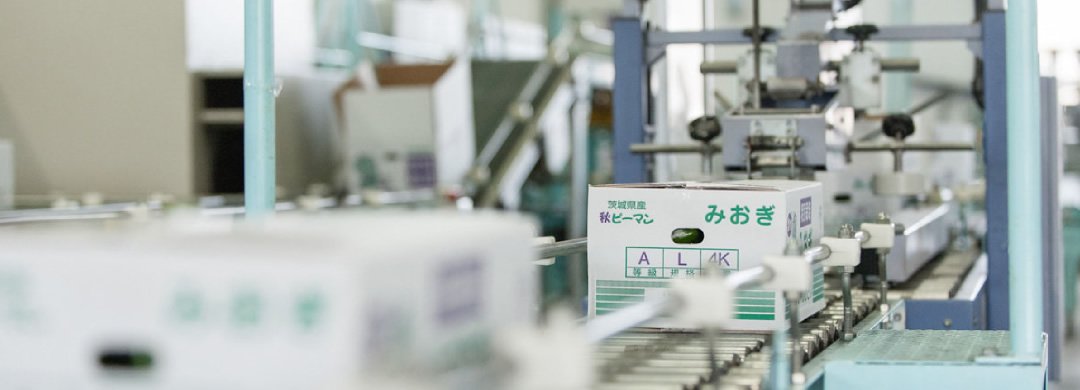 NKK 日本協同企画株式会社 選果機イタマーズシリーズ